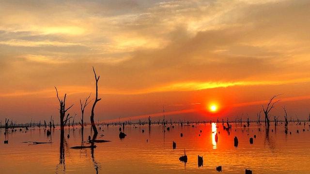 Lake Mulwala Fish Camp and… | Visit The Murray - North of ...